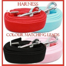 Harness Colour Matching leads
